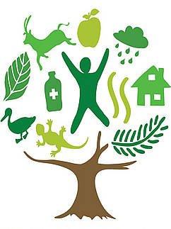 logo officiel année 2011 forets arbre seul