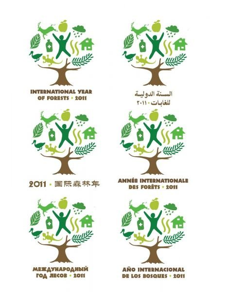 Assez 2011 – Année Internationale des forêts KV93